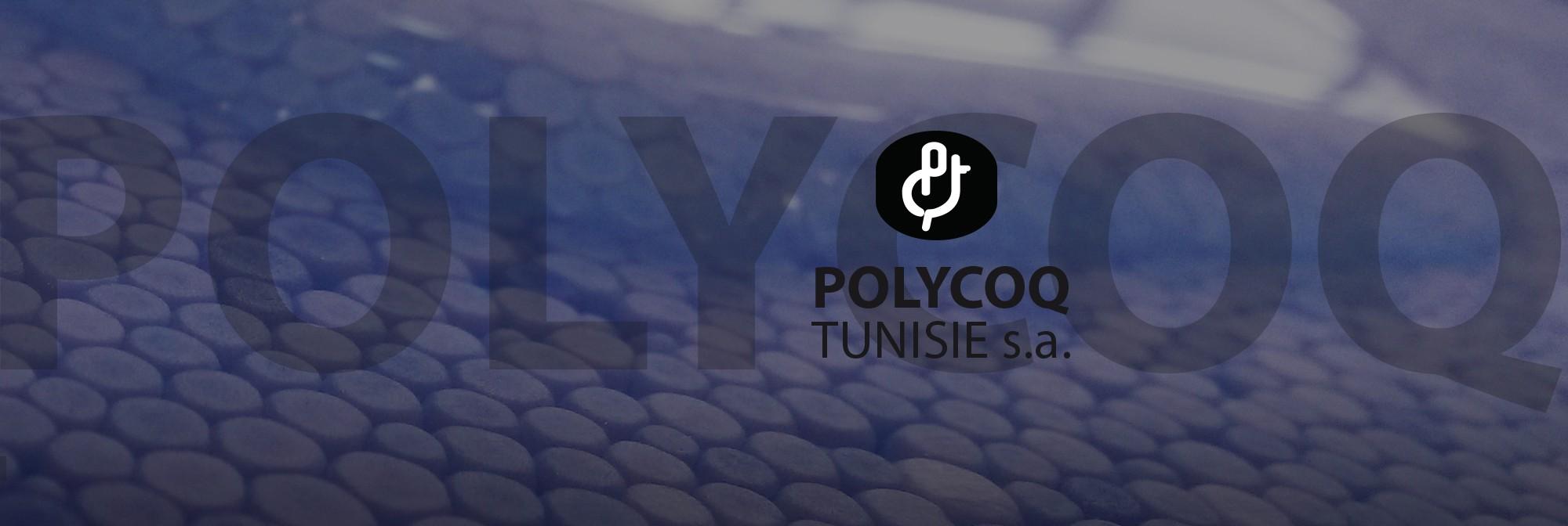 polycoq